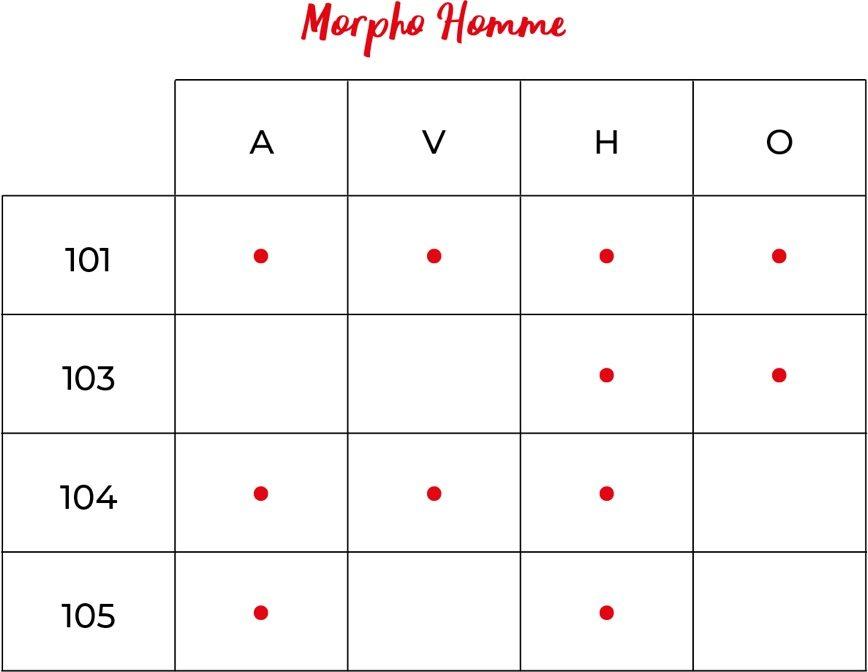 Le morphotype mode côté homme